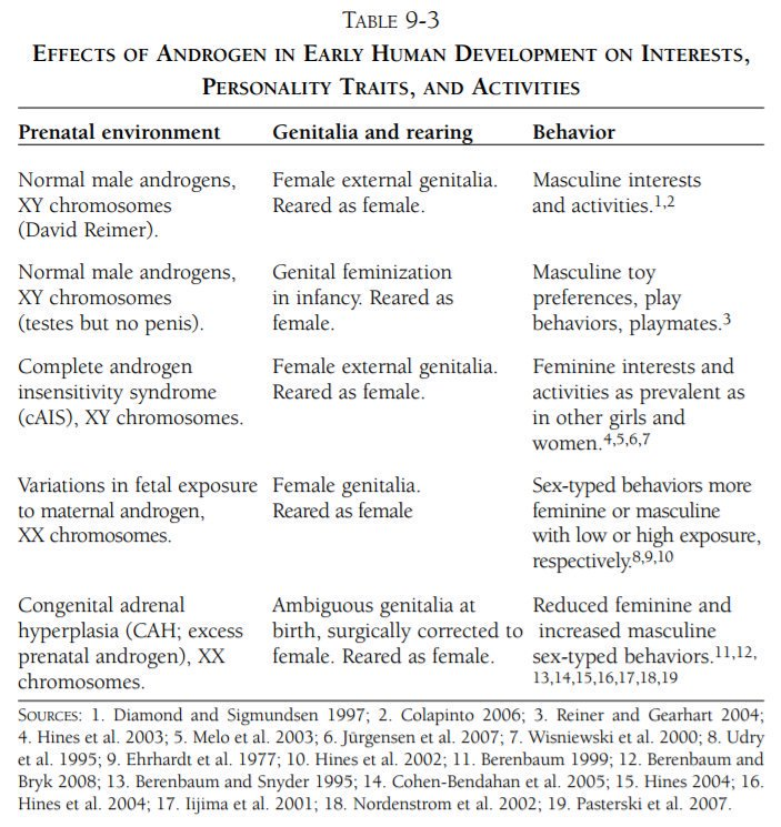 Effects of androgen in early human development on interests, personality traits and activities.jpg